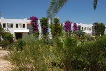 Kosdere Garden - ������, ������
